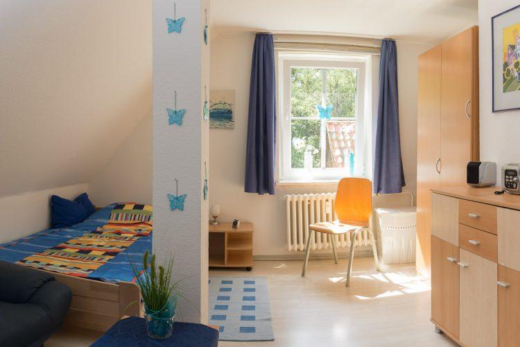 Zimmer Löwenzahn (3)