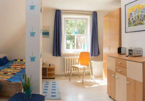 Zimmer-Löwenzahn-3-500x350